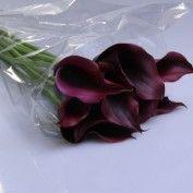 Calla Schwarzwalder Zantedeschia, Purple Wedding Flowers, Colorful Flowers, Colours, Plants, Flora, Plant