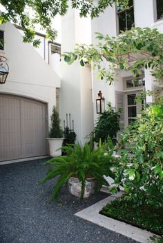 Pea Gravel Driveway, clean tailored architectural landscaping