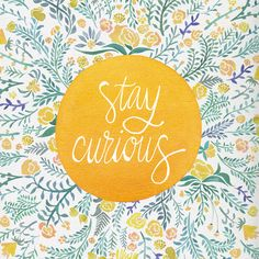 Stay curious | Positively Present