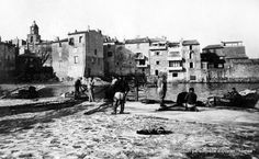 provence autrefois | Photos de la Provence d'autrefois