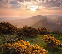 Corfe Castle (Stephen Emerson)