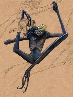 Asasabonsam- Ghana, western Africa myth: an arboreal vampire that had extremely long limbs with hooked toe claws because it hung upside down from branches to snatch up people passing by. It would suck the blood out of their thumbs.