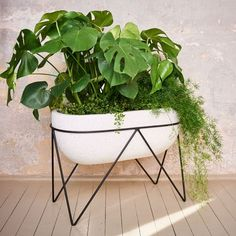 oval planter with metal stand