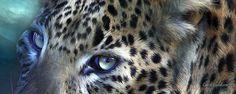 Wild Eyes Leopard Moon by Carol Calavaris
