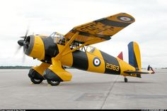 You can't imagine the feeling of wonder, viewing a vintage aircraft and watching a vintage aircraft flying. Navy Aircraft, Ww2 Aircraft, Military Aircraft, Westland Lysander, Air Festival, Airplane Art, Ww2 Planes, Military Photos, Aircraft Pictures