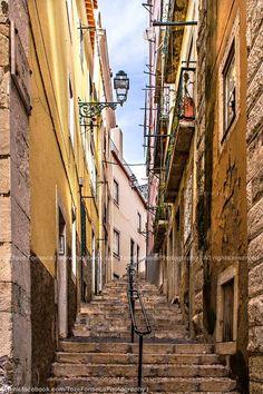 Mouraria, Lisboa - Portugal ©www.facebook.com/TozeFonsecaPhotography | All rights reserved A Mouraria é um dos mais tradicionais bairros da cidade de Lisboa. A zona deve o seu nome ao facto de D. Afonso Henriques, depois da conquista de Lisboa, ter confinado uma zona da cidade para os muçulmanos. Foi neste bairro que permaneceram os mouros após a Reconquista Cristã
