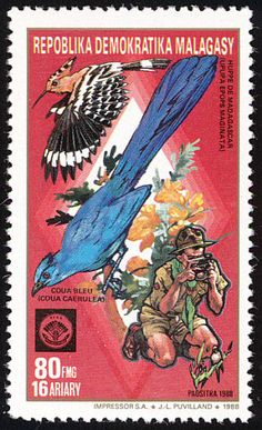 Madagascan Hoopoe stamps - mainly images - gallery format