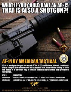 410 AR Style Shotgun