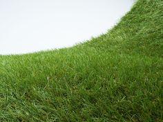 A következő lépcső a műfüveink kínálatában a 20 mm szálhosszúságú standard kivitel. A gyártás során több színű és árnyalatú fűszál került felhasználásra, szám szerint 3 zöld mellett egy barna. Így a standard, 20 mm-es műfű már nem csak tapintásra, de megjelenésében is nagyon hasonlít az élő gyepre, természetes hatást kelt. Ajánljuk mindenkinek, aki a rövidre vágott gyep látványára vágyik! Elsősorban kertépítéshez, de teraszok és erkélyek dekorálásához is kiváló választás. Herbs, Marvel, Herb, Medicinal Plants