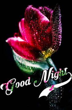 Good Night Hindi, Good Night Gif, Good Night Moon, Good Night Friends Images, Good Night Love Images, Romantic Good Night Image, Lovely Good Night, Beautiful Rose Flowers, Beautiful Gif