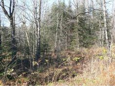 Private wooded 5.1 acre lot with great building potential. Direct snowmobile trail access and access the ATV trails as well. Excellent location for hunting and enjoying the great outdoors!