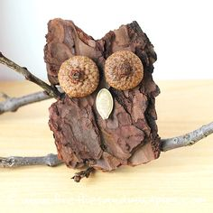 Bark Owls | Fireflies and Mud Pies