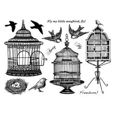 Shop for Crafty Individuals Unmounted Rubber Stamp Pkg - Beautiful Birdcages. Steampunk Bird, Decoupage, Bird Cages, Illustrations, Digital Stamps, Digital Prints, Collage Sheet, Clipart, Vintage Images