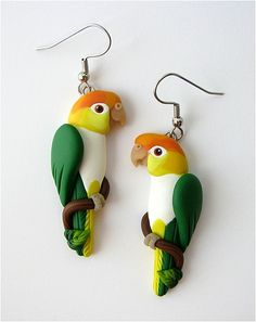 White Bellied Caique Earrings Handsculpted from Polymer Clay