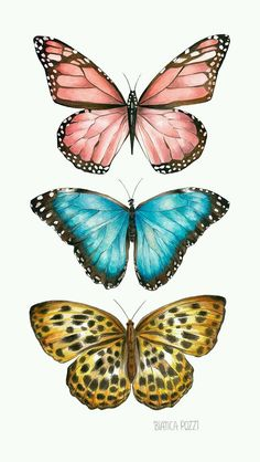 Ilustração by Bianca Pozzi.Bianca Pozzi on We Heart ItDelicados & Coloridos Source by I do not take credit for the images in this post.ImageFind images and videos about butterfly on We Heart It - the app to get lost in what you love. Butterfly Images, Butterfly Drawing, Butterfly Painting, Drawings Of Butterflies, Butterfly Quotes, Pink Butterfly, Aesthetic Iphone Wallpaper, Aesthetic Wallpapers, Cute Wallpapers