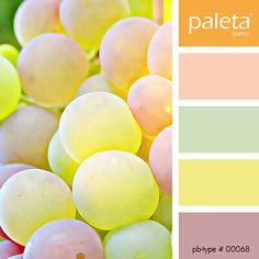 Pastel Colour Palette, Colour Pallete, Colour Schemes, Color Patterns, Color Palettes, Color Combinations Home, Color Combos, Pantone, House Of Turquoise