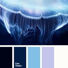 black color, blue shades, blue-color, bright-blue color, cold shades, color matching, dark blue color, lilac color, midnight blue, pale lilac color, violet color, white color.