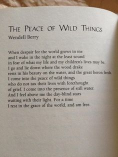 The Peace of Wild Things. Wendell Berry focuses on nature and its peace in his poems while in his prose, he writes about environmental issues and issues he believes strongly in. Poem Quotes, Great Quotes, Words Quotes, Wise Words, Life Quotes, Inspirational Quotes, Sayings, Wild Things Quotes, Wild And Free Quotes