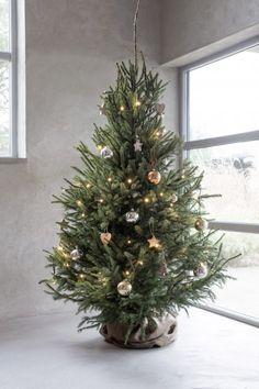 Christmas On A Budget, Christmas Mood, Noel Christmas, Simple Christmas, Christmas Crafts, Minimalist Christmas Tree, Christmas Tree Inspiration, Christmas Interiors, Christmas Wonderland