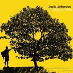 In Between Dreams, Jack Johnson $13