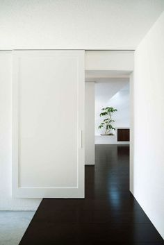 Sliding door and dark floors use of black and white decor | chic black white hallway | doors | minimal | black & white | green plant