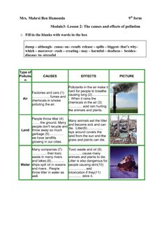 essay based on article internet
