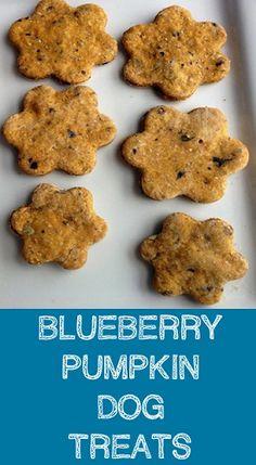 Blueberry Pumpkin Dog Treats |