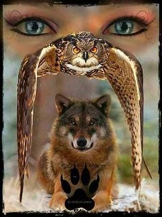Tattoo for men wolf native american wolves Ideas Native American Wolf, Native American Artwork, American Indian Art, Native American History, Wolf Images, Wolf Photos, Wolf Pictures, Animal Spirit Guides, Wolf Spirit Animal