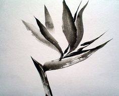 Bird of Paradise, sumi-e, love the elegant/simple brushstrokes by Jean ...