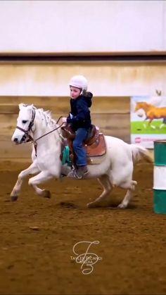 Horses, Lovers, Animals, Animales, Animaux, Animal, Animais, Horse