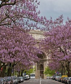 J'adore Paris au Printemps! I Love Paris in the...