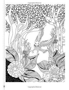 Traumfänger: Die Reise eines Seelenvogels: Ein wunderschönes und inspirierendes Malbuch für alle Altersgruppen: Amazon.de: Christina Rose: Bücher