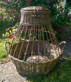 Chicken basket- these would be AWEESOME to hold my for sale chickens in at the rendezvous!!