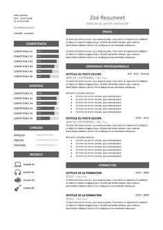 Zeeburg - Modèle de CV Classique - Gris Cv Curriculum Vitae, Grief, Gray, Job Resume Template