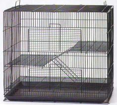 Mcage Three Size, 3 Level with Tight Inch Bar Spacing Shelves Ladders for Guinea Pig Ferret Chinchilla Sugar Glider Rats Mice Gerbil Animal Cage (Black, Medium) Pet Mice, Pet Rats, Pet Rodents, Mice Mouse, Chinchillas, Puppies Tips, Small Puppies, Pet Rat Cages, Rat Care