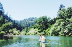 Canoeing on the Russian River  Fill your cooler with provisions, slick on some sunscreen, grab your sunhat, and paddle away. Anchor on the area's small beaches for picnics and swimming. For canoe rentals, check out Burke's Canoe Trips in Forestville.  //  8600 River Rd., Forestville