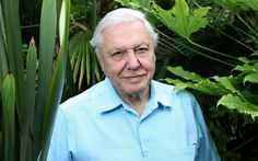 Sir David Attenborough: Enough With the Creationists and Climate Change Deniers! - The Daily Beast | Amazing man. Very good article and well worth reading. Please share!