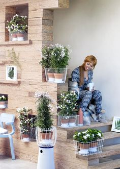 Weiße Blüten als frischer Kontrast – Pflanzenfreude.de