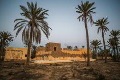 Shoof (Tunisie) #streetart #erriadh #djerba #tunisia #acrylic