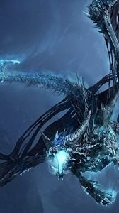 Preview wallpaper world of warcraft, dragon, cold, fly, tail, wings