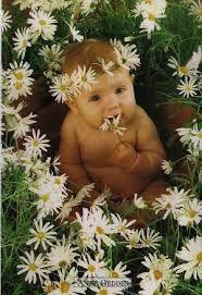 Bylinky pro imunitu dětiček, na zažívání pro miminka, ulevují od kolik, pro maminky po porodu, aby se zbavily bříška :)