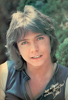 David Cassidy was popular during the seventies not just for his voice and young looks but also for his overflowing hair.