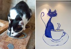 Le Café des Chats opens in Paris
