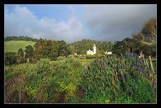 Carmelite Monastery Chapel in Carmel California