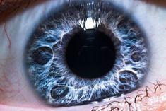 HD+Close+Up+of+Iris