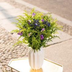 Frische Blumen für die Tischvase - bis zum 21.12.2015: Agapanthus, Solidago und Fresien