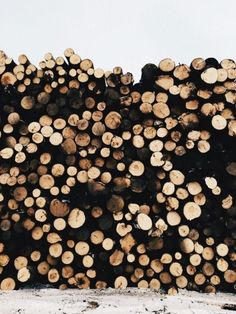 For some reason I really love log pictures.. I think it's the different hues of beige and the dark black of the shadows.  I love the empty space at the top-