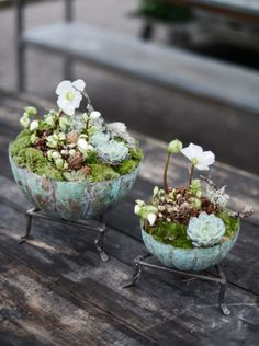 Small planters: do it yourself- Kleine Pflanzgefäße: Selber machen Small planters: do it yourself, # Planters - Indoor Garden, Indoor Plants, Outdoor Gardens, Diy Flowers, Flower Pots, Flower Table, Container Plants, Container Gardening, Succulents Garden
