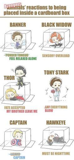 Avengers in a box. Can't put Loki in a box. Funny Marvel Memes, Dc Memes, Marvel Jokes, Marvel Dc Comics, Marvel Heroes, Marvel Art, Iron Man Avengers, The Avengers, Avengers Memes