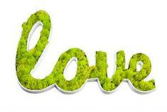 Tableau végétal Stabilisé  - Love